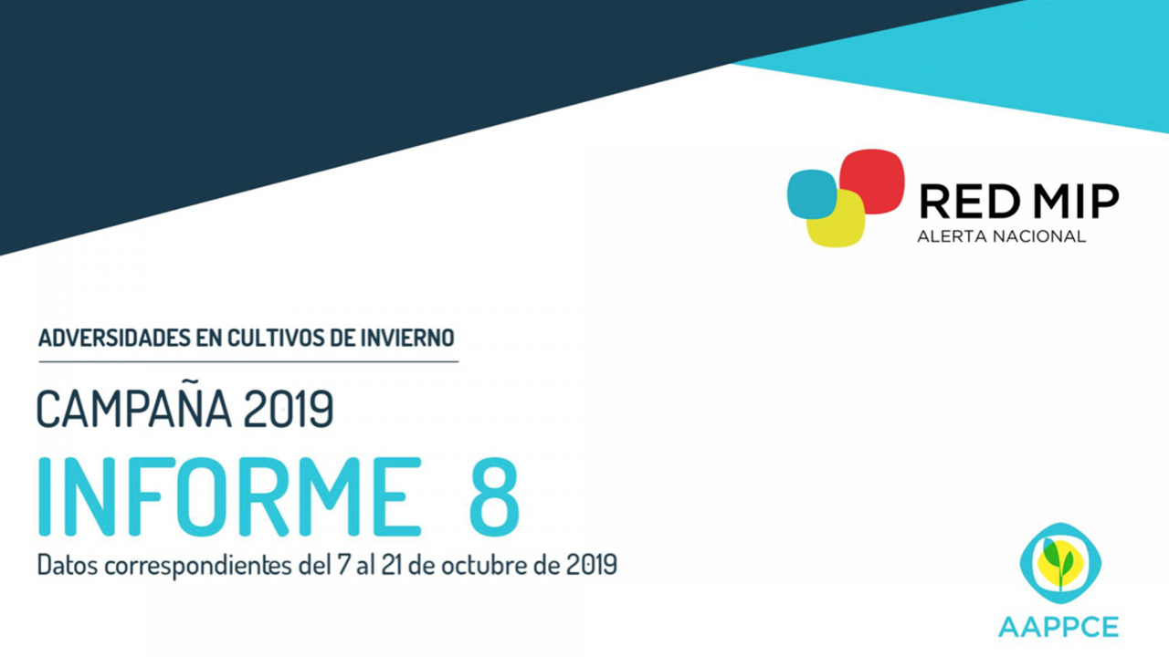 informe-redmip-8-asesoragro-1280x720.png